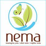 National Environment Management Authority (NEMA)